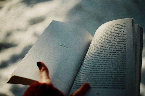 """""""Un grand livre commence longtemps avant le livre."""" Christian Bobin"""