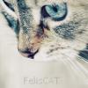 FelisCAT