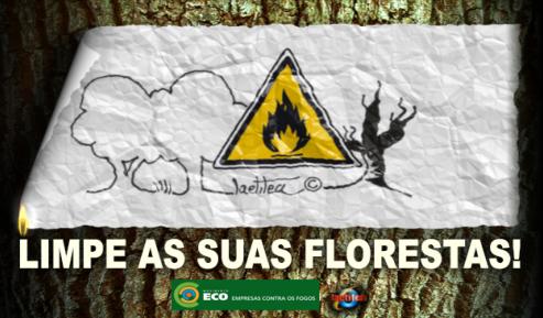 FLORESTAS LIMPAS