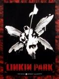 Photo de miroulinkinpark