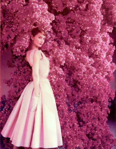 Marilyn Monroe v.s. Audrey Hepburn