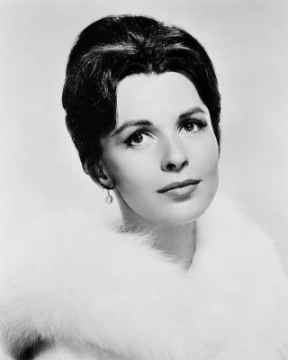 Claire Bloom v.s. Eva Bartok