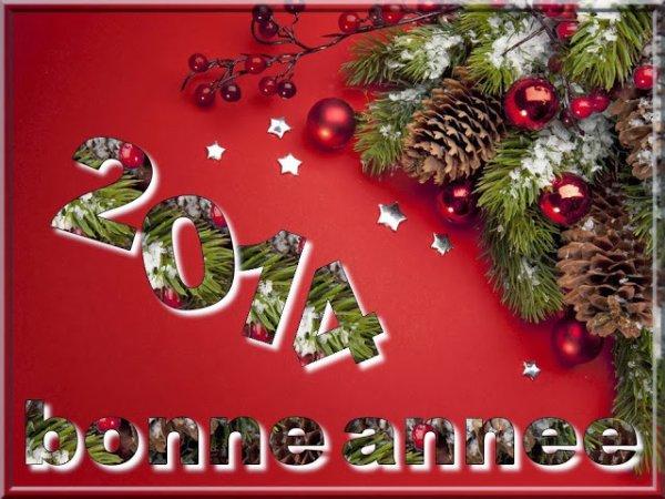 Bonjour mes amis je vous souhaite une heureux année 2014 et une bonne santé