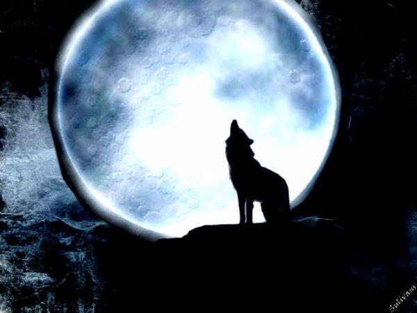 Un poème : La lune