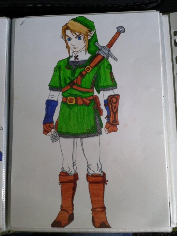 Link ( Tenue du héros du temps )