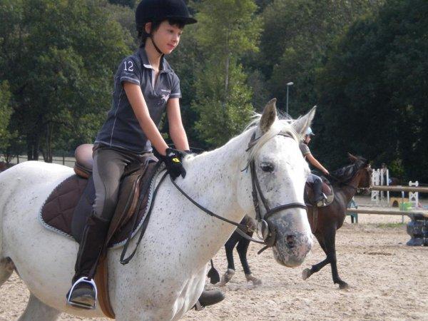 La Cavalcade des Blogs || Qu'est l'équitation ?