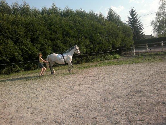 Longue renne