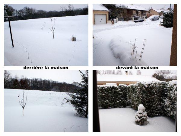 Un Noël blanc.....