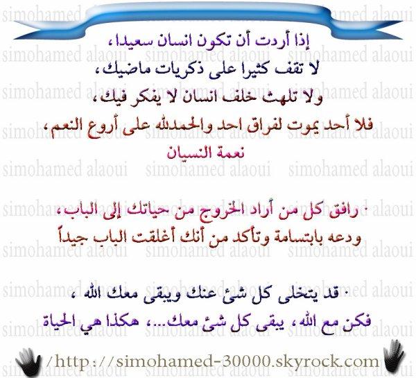 Simohamed Alaoui