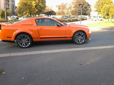 Mustang ! <3