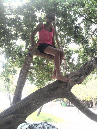 Une envi de grimper au arbres !!!