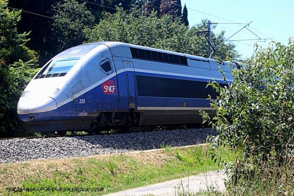TGV a destination de paris gare de lyon avec pris au vole lol