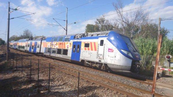 Ter 881751 semi direct entre Marseille Saint Charles et menton
