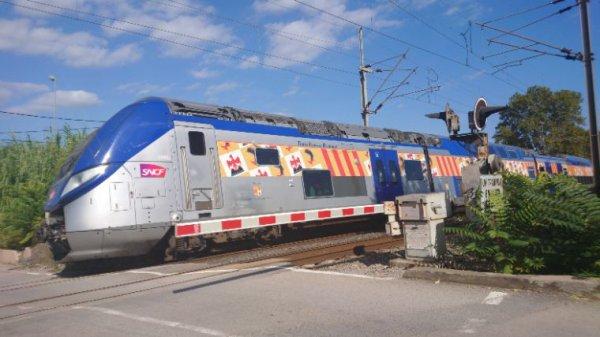 Toujours le Ter 881751 semi direct entre Marseille et Saint Charles et menton