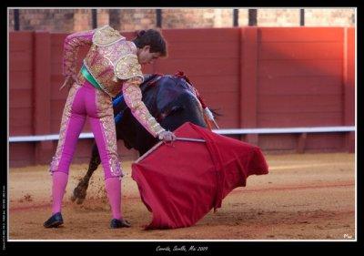 5- La corrida en Andalucia