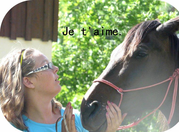 """""""Vous vous efforcerez de causer avec votre cheval et de vous en faire écouter """"  Baucher"""
