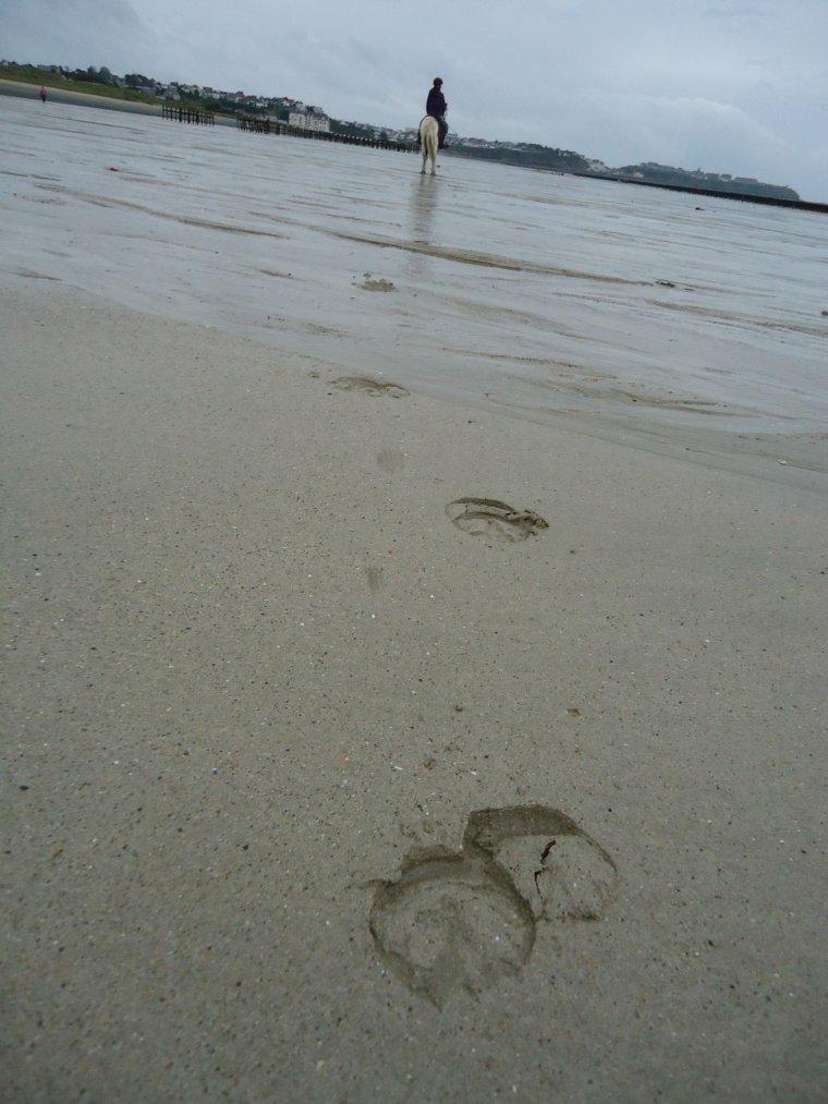 Ballade à la plage