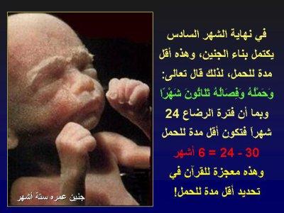 نمو الجنين في بطن أمه 3