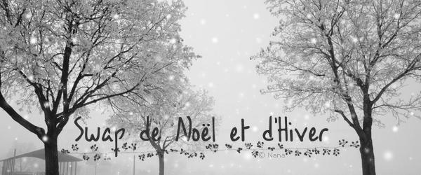 Swap de Noël et d'Hiver - Patience , Patience !! ♥