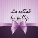 Photo de collab-des-pullip