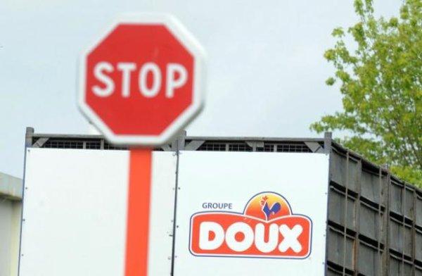 Doux: La région Bretagne à la rescousse?