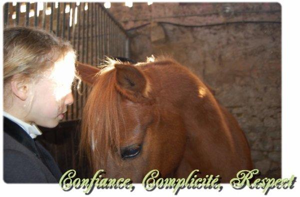 L'amour entre un cavalier et sont cheval permet d'aller au dela de l'imaginaire