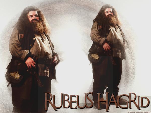 RUBEUS HAGRID   Créa - Texte