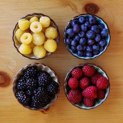 « La gastronomie est l'art d'utiliser la nourriture pour créer le bonheur. »