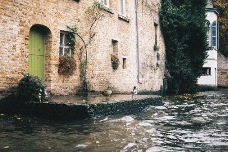 « L'eau parle sans cesse et jamais ne se répète. »