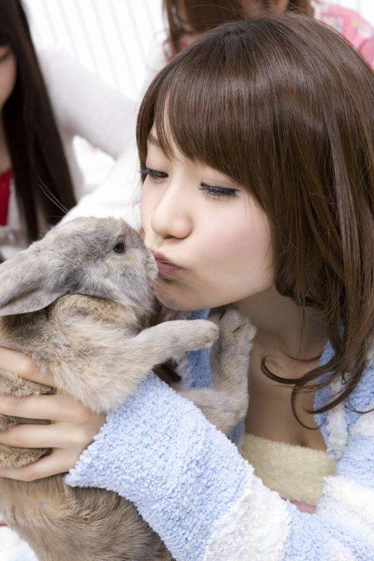 AKB48 Et les... LAPIN ?!