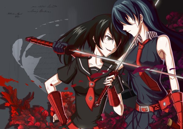 - Akame ga kill/Red eyes sword -