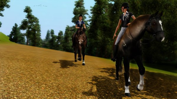 ♘ Sims animaux&cie ♘