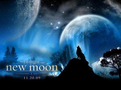 Quizz sur New moon!!!