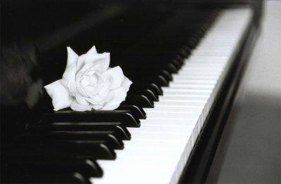 la vie est comme un piano il y a le noir et le blanc il faut jouer les deux pour avoir une. Black Bedroom Furniture Sets. Home Design Ideas
