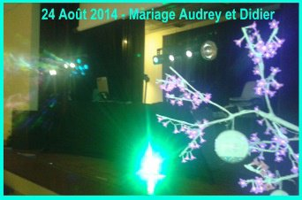 Mariage Audrey et Didier