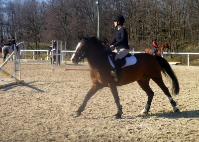 Article GALOP