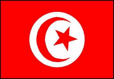 bo pays la tunisie son mon préfréré la tunizie je rech contacte pour des amitié rien de + avec eux ce du bled  en france cest otre chose voila