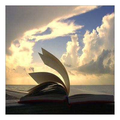 Notre vie est un livre.