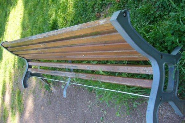 Au Parc du Rossignol dans le Marais de Lomme, les amoureux ont déserté les bancs publics