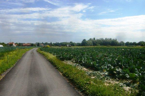 En visite dans le faubourg du Haut-Pont à Saint-Omer