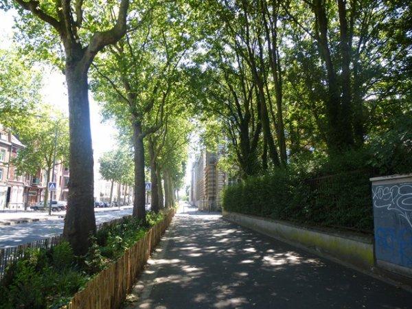 Moi, j'aime les grands boulevards !