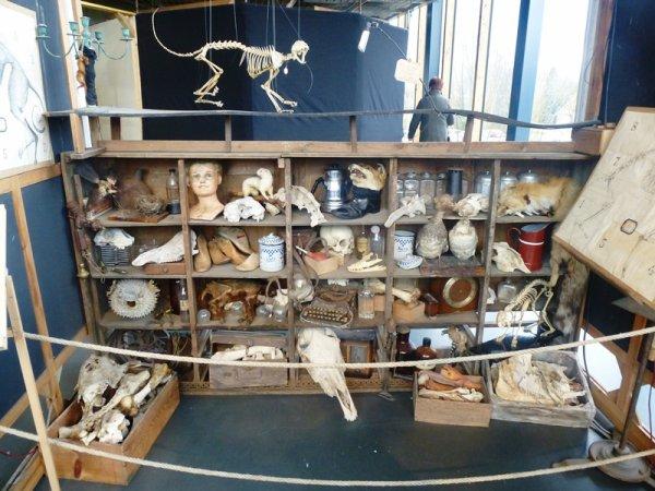 L'ossuaire dégingandé du Colysée de Lambersart