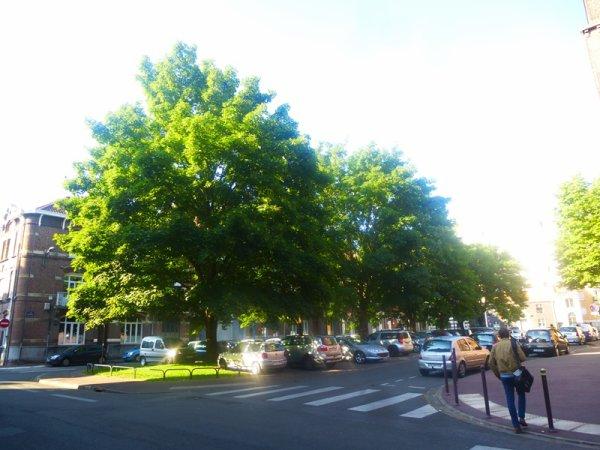 Itinéraire vert