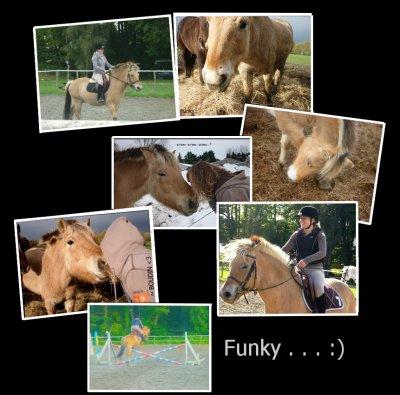 Funky  ! ♥Un Coup De C½ur