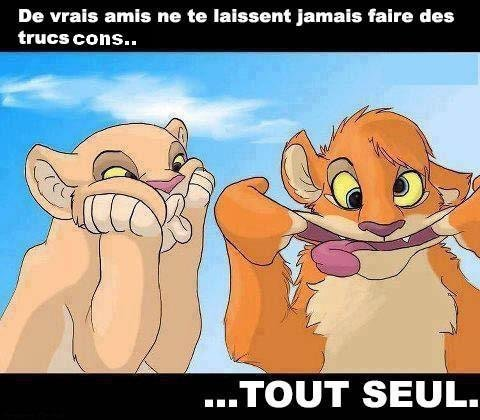Amis ... Pour la vie ! :)