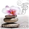Bac-Esthetique