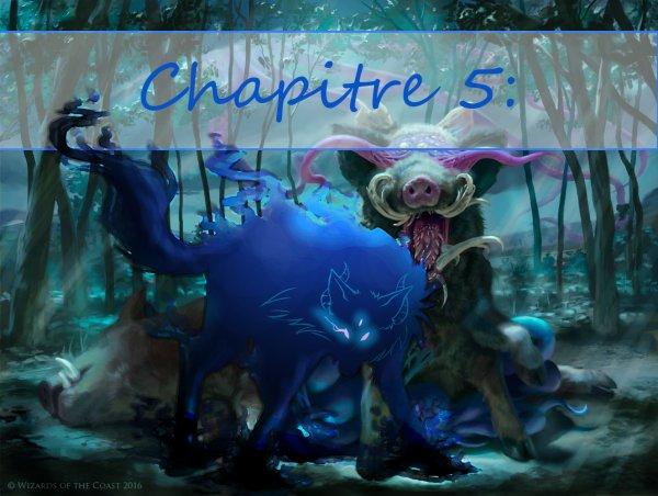 Chapitre 5 : Traque