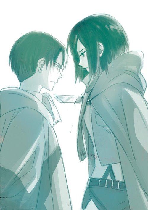 Ma théorie sur le lien de parenté entre Livaï et Mikasa