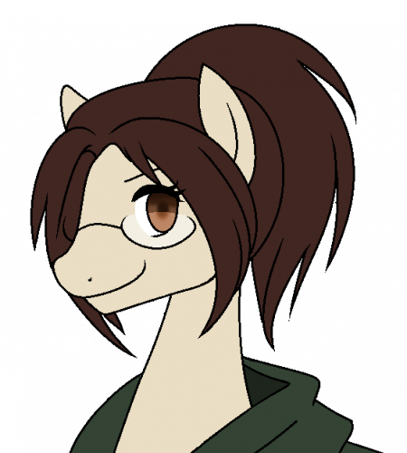 SnK Pony II