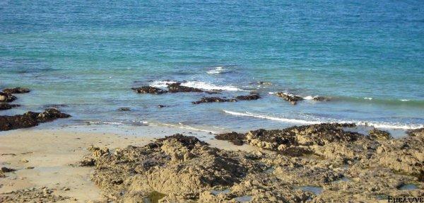 La mer est sans routes, la mer est sans explications...
